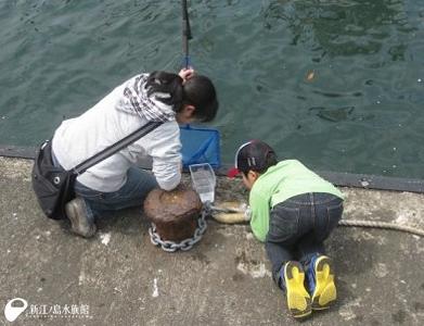 こどもの日企画 親子でクラゲ観察